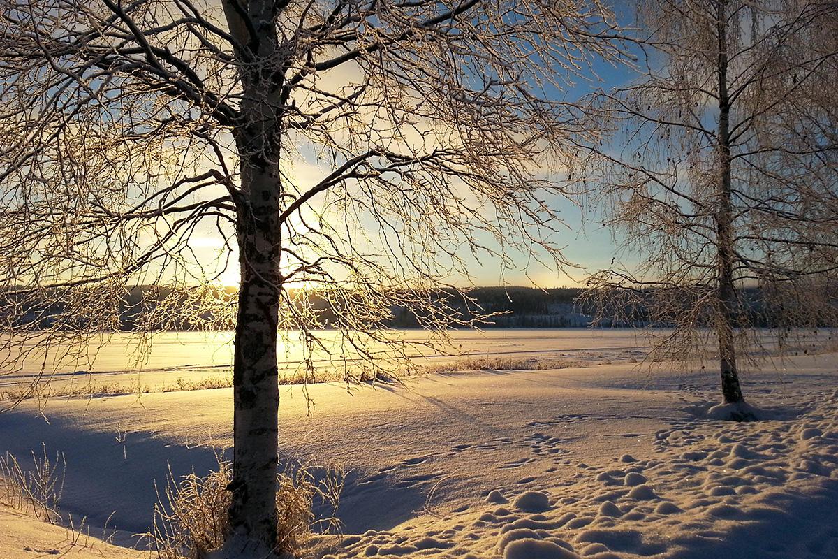 solig vinterdag